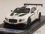 Bentley Continental GT3 #7 Gulf 12 Hours Abu Dhabi 2013  Kane - Smith - Meyrick 2013 by LOOKSMART