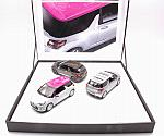 Citroen 3x DS3 2012 Roofdeco Flower - Graphic art - Falvio (Gift Box) by NOREV